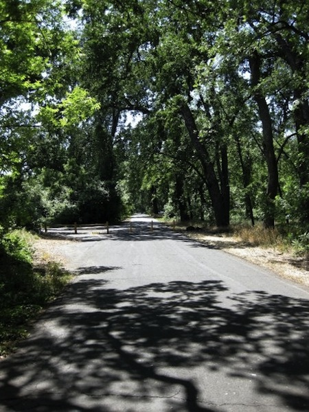 Bidwell Park, Chico, California, USA