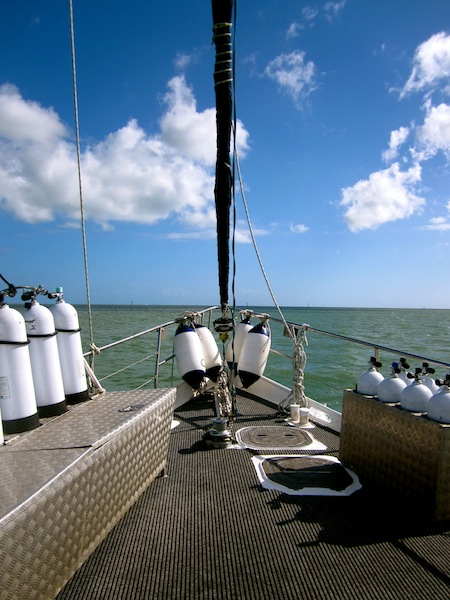 Coral Sea Dreaming, Sailing the Great Barrier Reef, Cairns, Australia