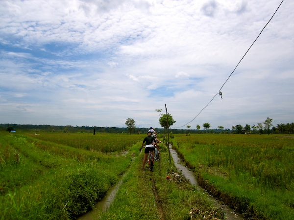 Cycling through the Bali rice paddies with Banyan Tree Bike Tours, Indonesia