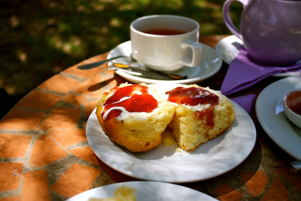 Lavender tea and scones at Cape Lavender Farm, Margaret River, Western Australia
