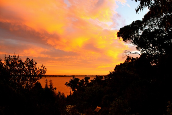 Gorgeous orange sunset from Kings Park, Perth, Western Australia