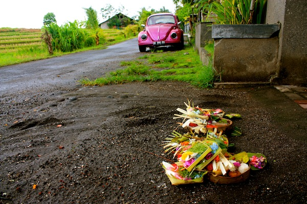 Purple Volkswagon bug and Balinese offerings at rice paddies, Seminyak, Bali, Indonesia