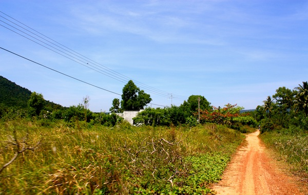 Road through the Pho Quoc National Park, island in South Vietnam