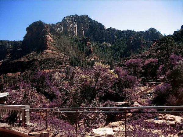 Sedona, Arizona in May 2008