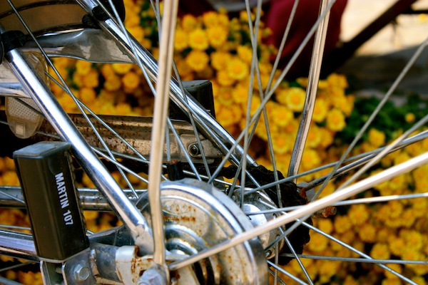 Bicycle spokes and flowers on the street in Hoi An, Vietnam