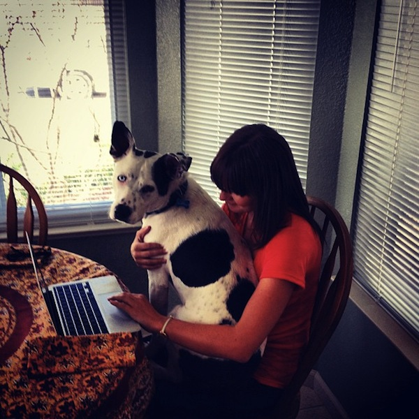 Christine Amorose and puppy Annie working on the computer