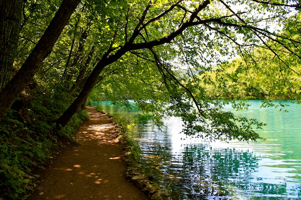 Trees and path next to the clear blue waters of Plitvice Lakes National Park, Croatia