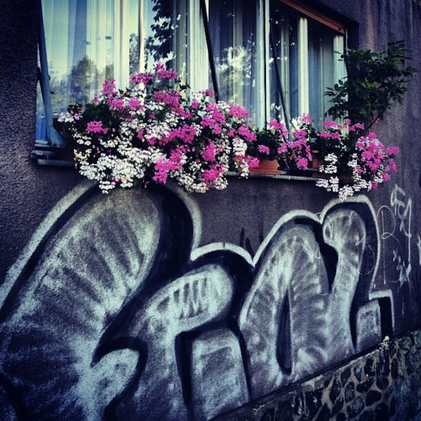 Graffiti tags and pink flowers in Zagreb, Croatia