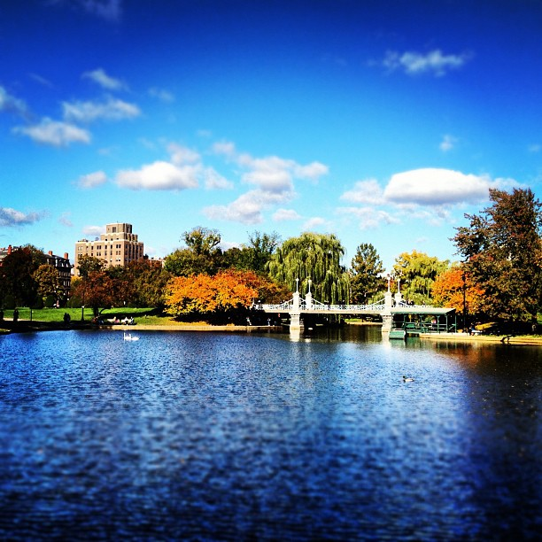 Boston Public Garden on a beautiful day in New England in the fall