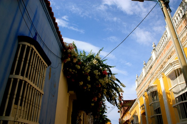Flowers and architecture in Cartagena, Colombia, South America