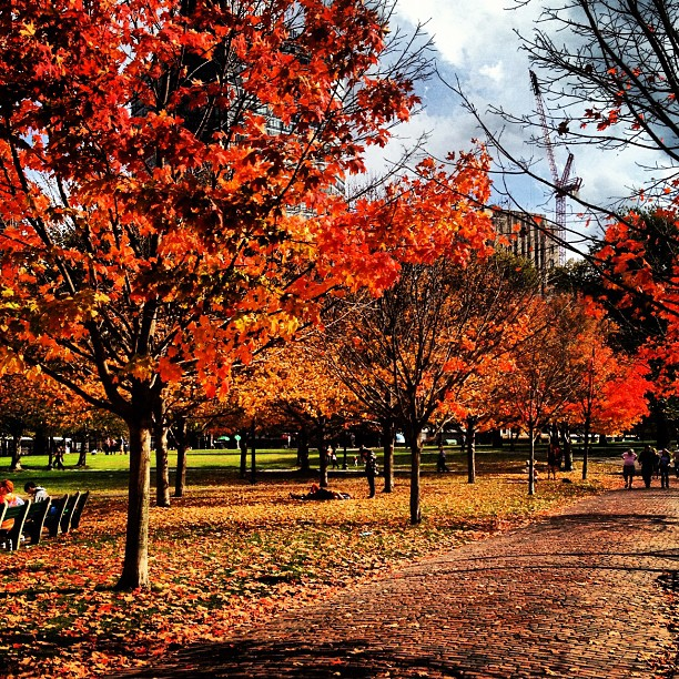 Boston Common in the fall in New England
