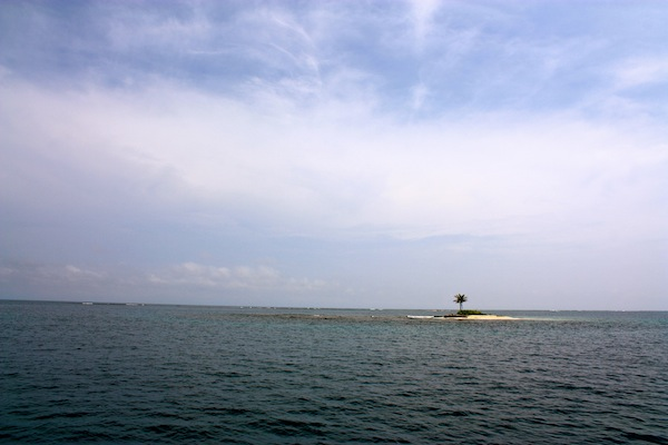One Palm Island in the San Blas Islands on a sunny day in the Caribbean