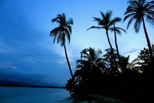 Palm trees on the San Blas Islands at dusk in the Caribbean