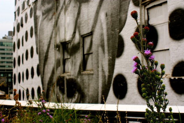 Flowers and JR's tribute to the Lakota people on the High Line in Chelsea, New York City