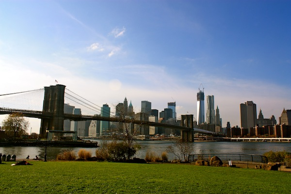 The Brooklyn Bridge Park and the Manhattan Financial District Skyline