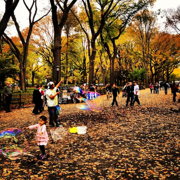 Bubbles in Central Park in fall in New York City