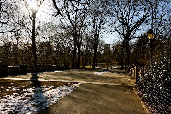 Central Park in winter in New York City