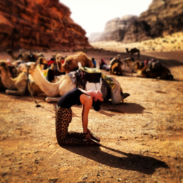 Christine Amorose doing a camel pose with camels in Wadi Rum desert in Jordan