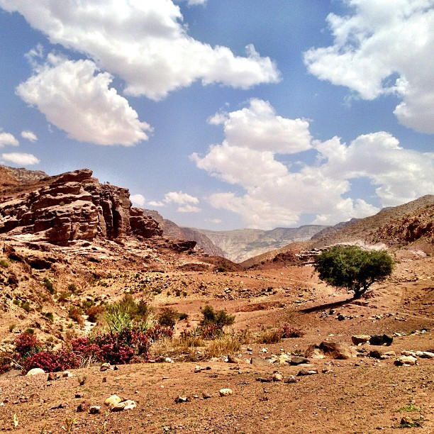 Hiking through the Dana Nature Reserve in Jordan