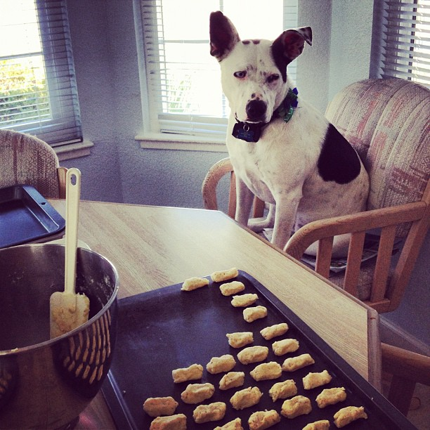 Learning to bake almond cookies with Annie
