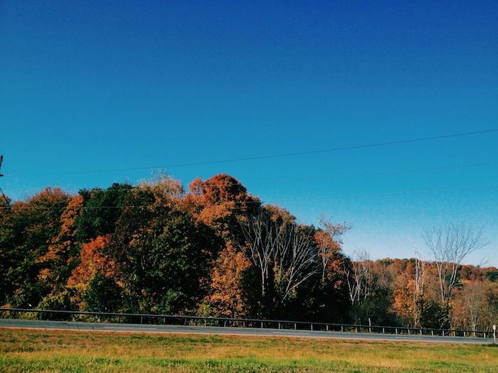 Fall colors in upstate New York, Processed with VSCOcam with c1 preset