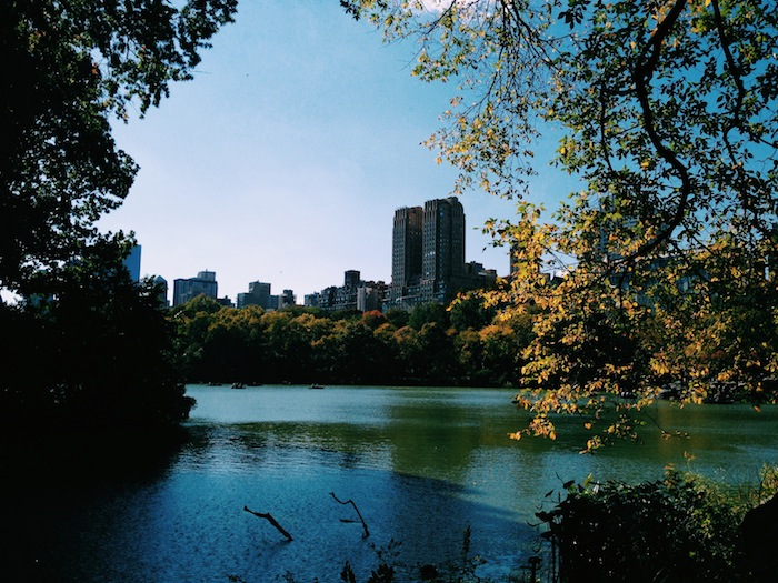 Central Park in autumn, Processed with VSCOcam with c1 preset