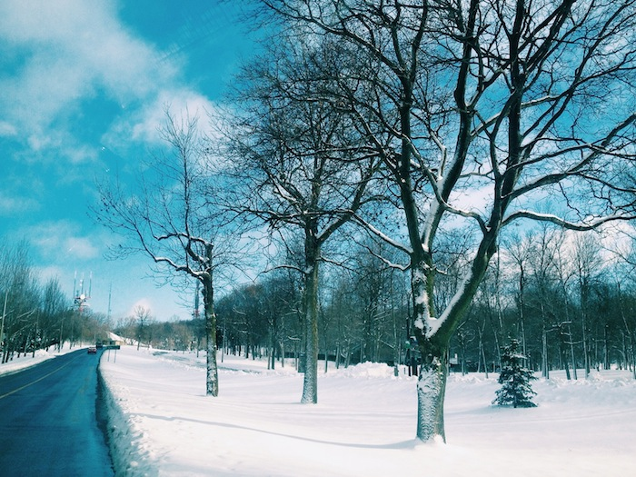 Mont Royal Park in Montreal in the snow