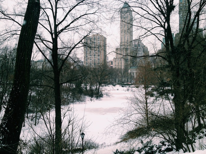 Central Park in the snow, Processed with VSCOcam with c1 preset