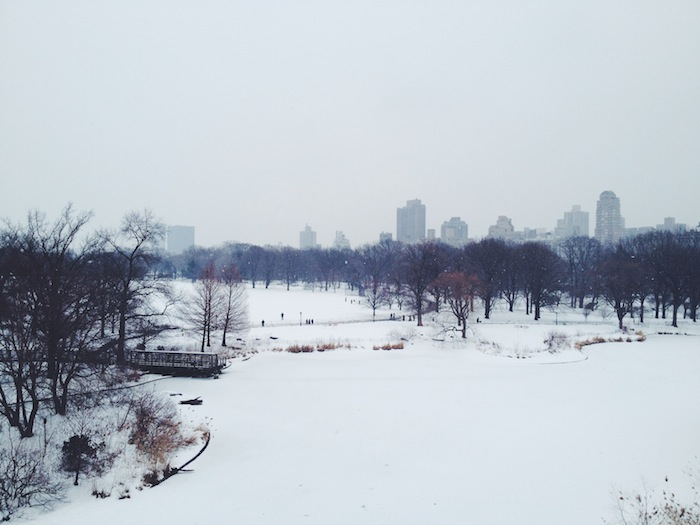 Central Park, New York City after a snowstorm