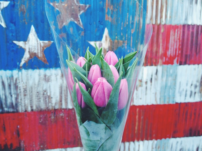 Fresh tulips in front of the American flag