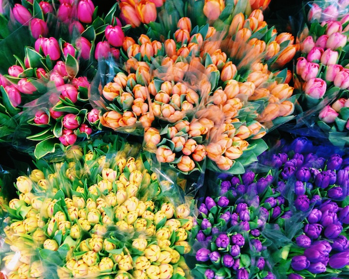 Colorful spring tulips at a corner bodega in New York City