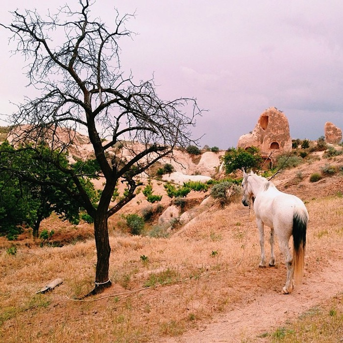 Trekking through Cappadocia with Middle Earth Travel