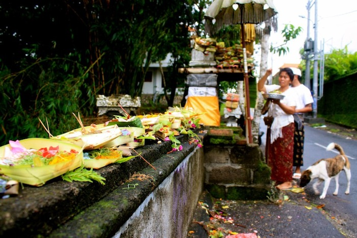 Offerings in Bali, Indonesia