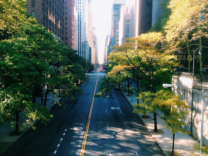 New York City in the fall, seen from Tudor City Overpass