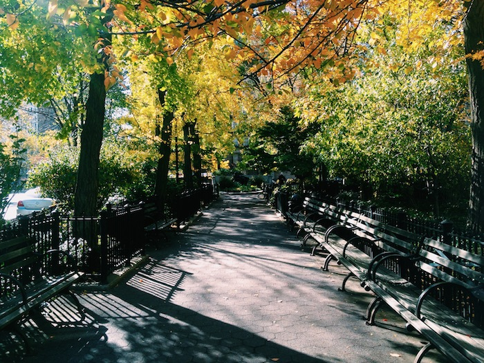 Strauss Park in New York City