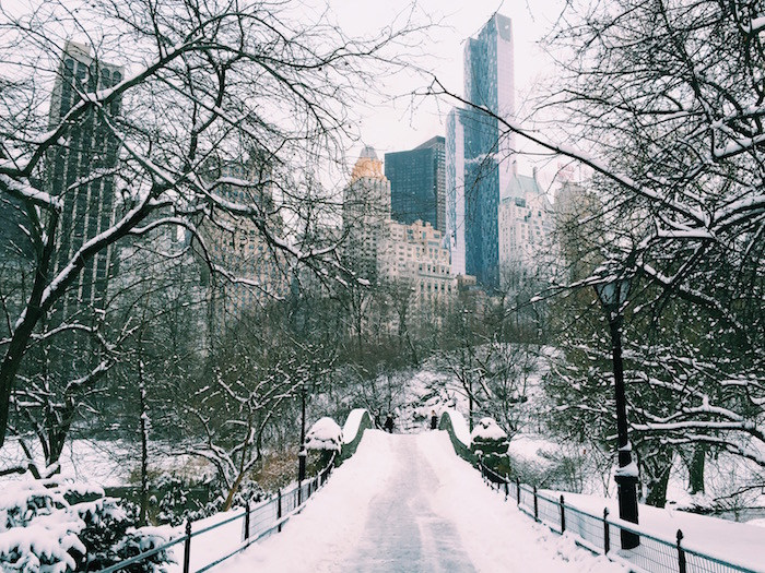 A snowy Central Park in a New York City winter