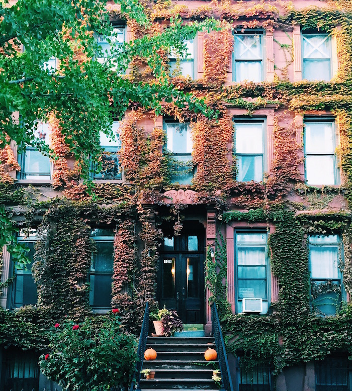 Brownstone with foliage in Brooklyn
