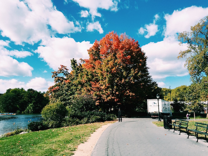 Prospect Park in the fall in New York City