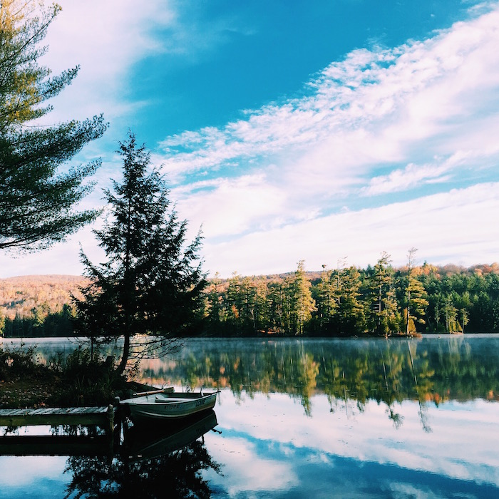 Wilderness Field Notes at Morningside Cabins in Adirondacks
