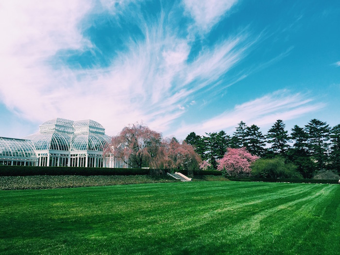 New York Botanical Gardens in the spring