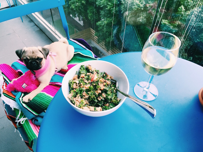 Gertie the pug and Sweetgreen salad with white wine