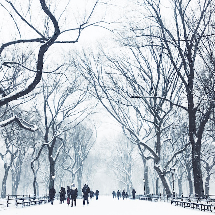 Central Park in New York City snowstorm