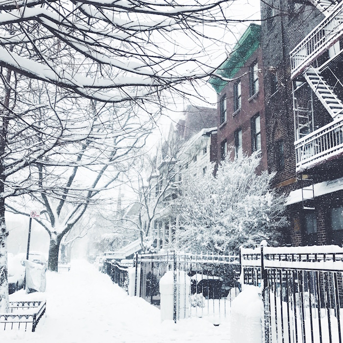 Snowy day in Bedford-Stuyvesant, Brooklyn