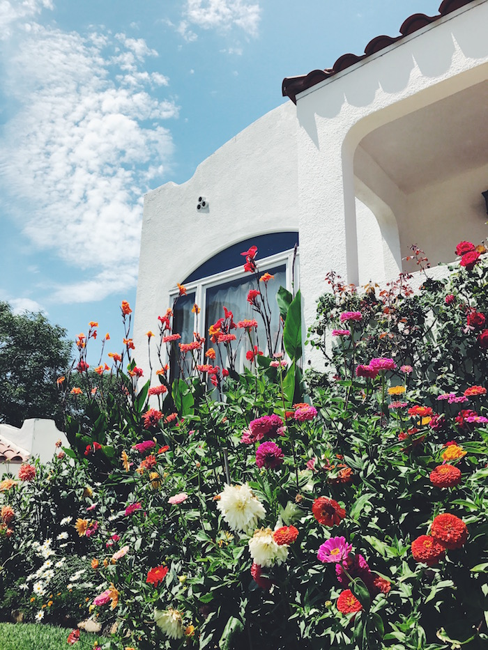 House with flowers in North Park, San Diego
