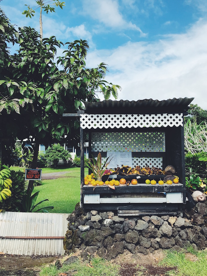 Fruit stand on the side of the Road to Hana in Maui