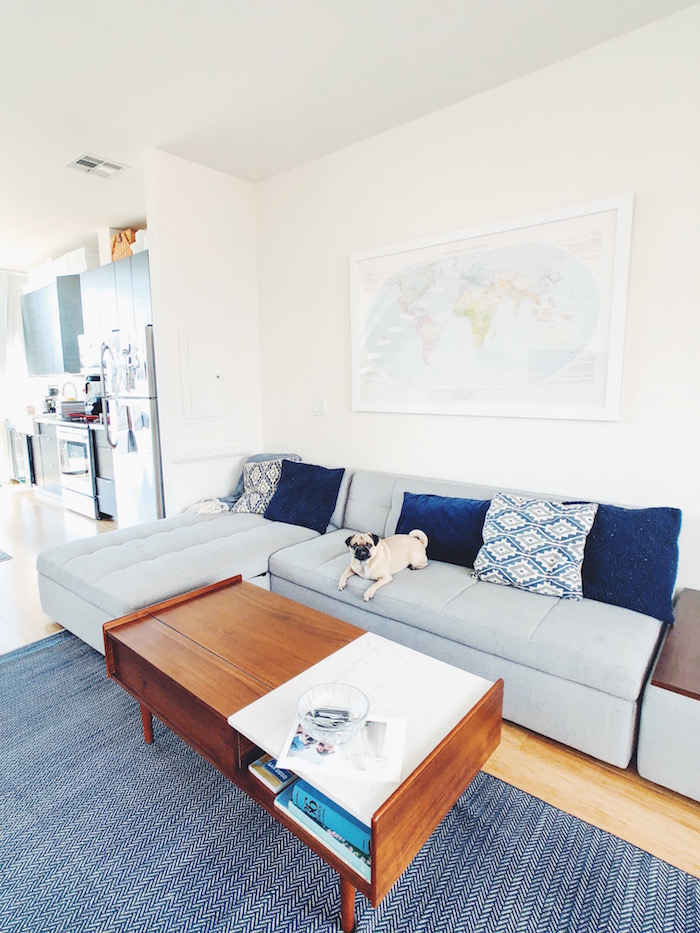 Living room in Modern apartment in North Park, San Diego